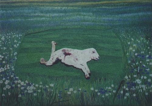'Das Drama der Natur' von  Dietrich Guertler