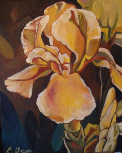 Gelbe Iris in 3D