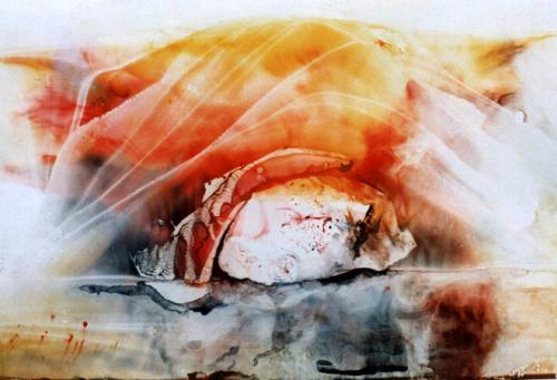 'sheltered' von Ingeborg Berger