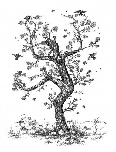 'Gaukler' von  naturespiritart