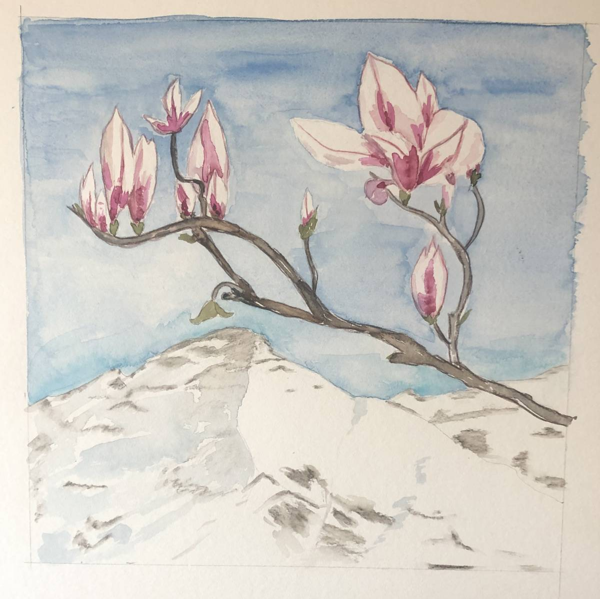 'Magnolie im Winter' von Anja Napiany