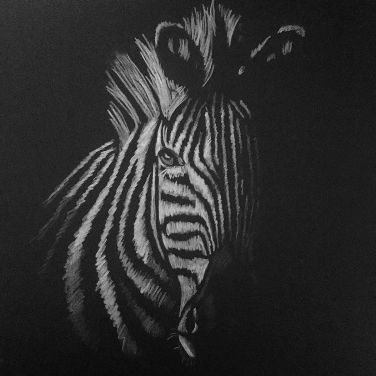 'Zebra' von  LaraKoenig