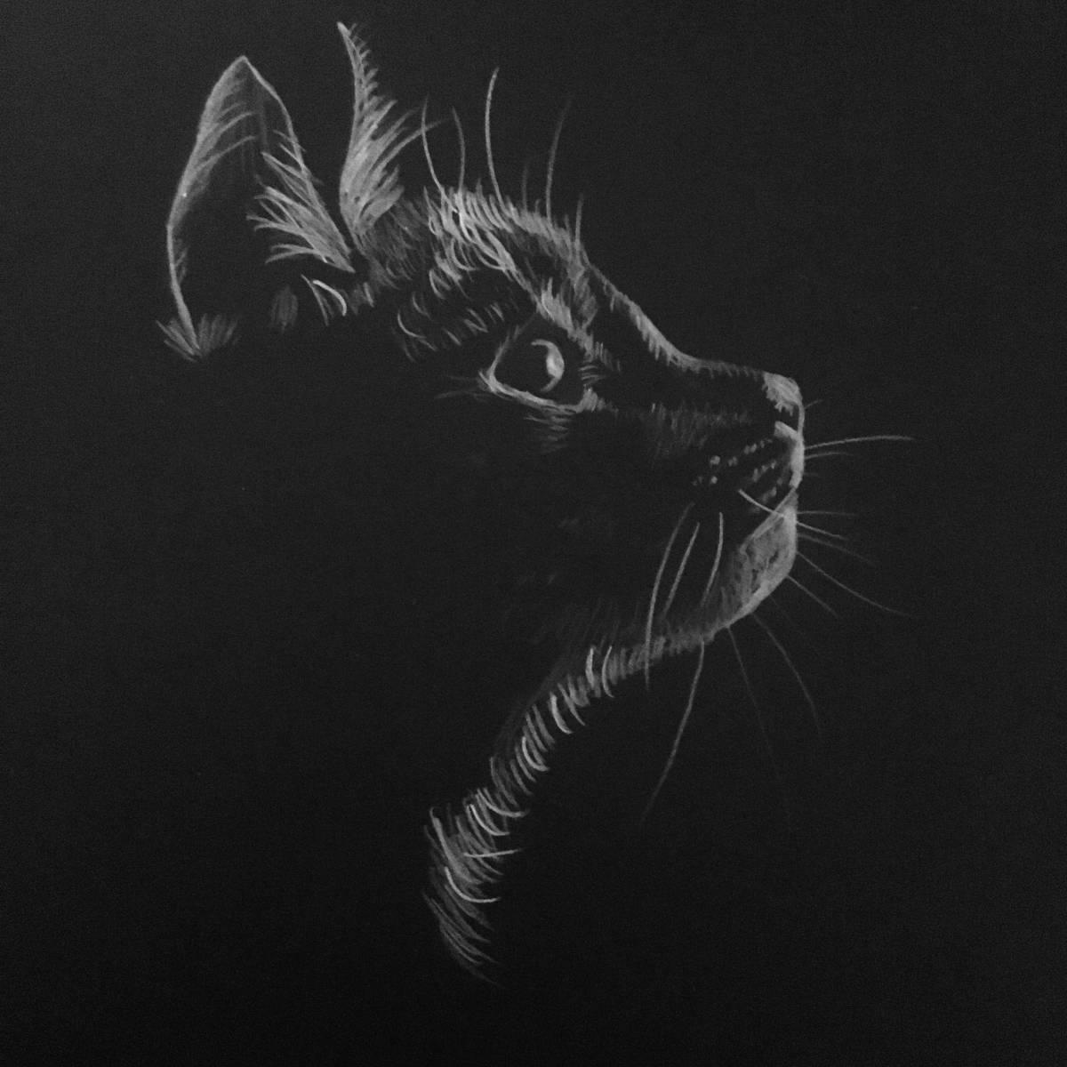 'Katze' von  LaraKoenig