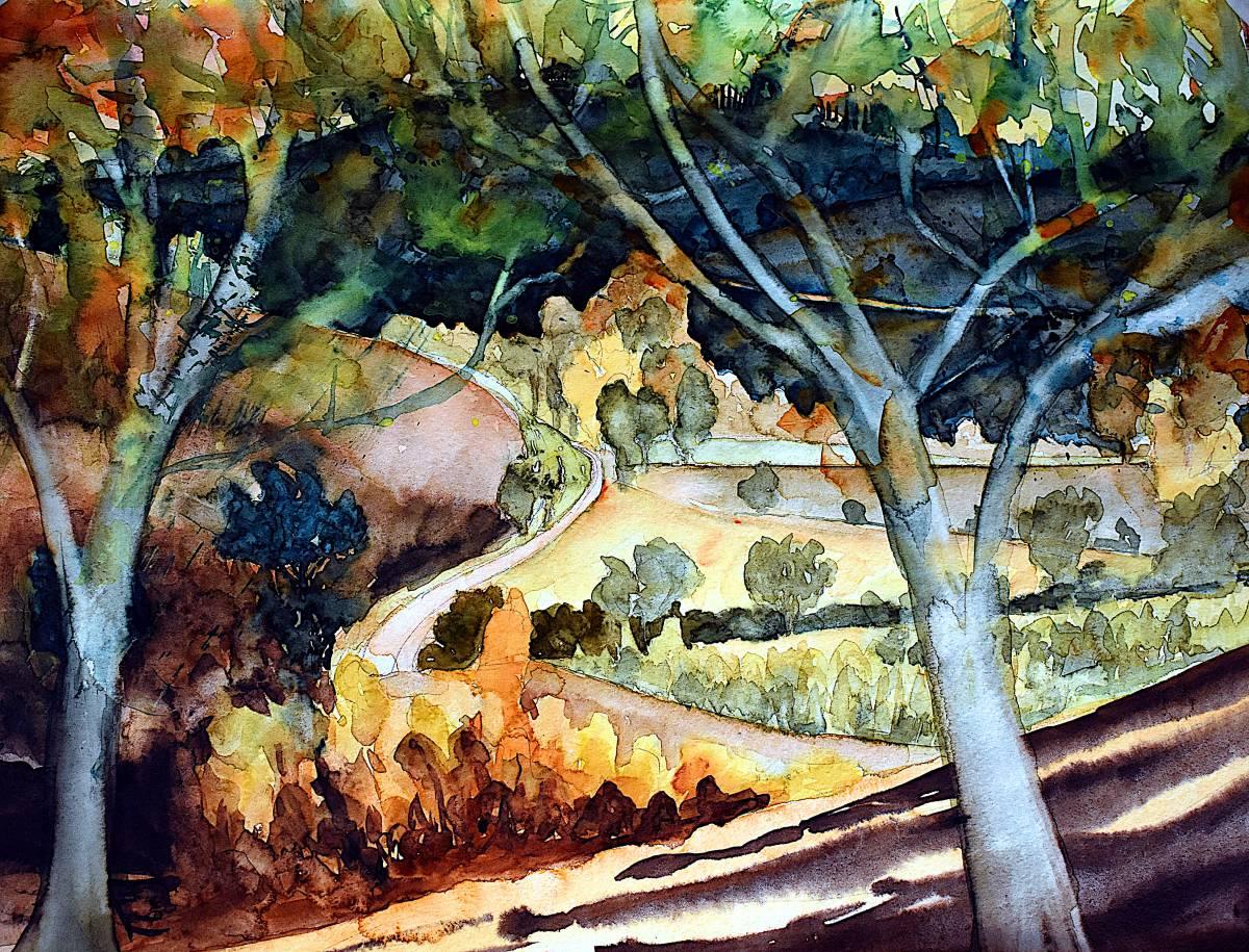 'Toskana im Herbst' von  ansehen