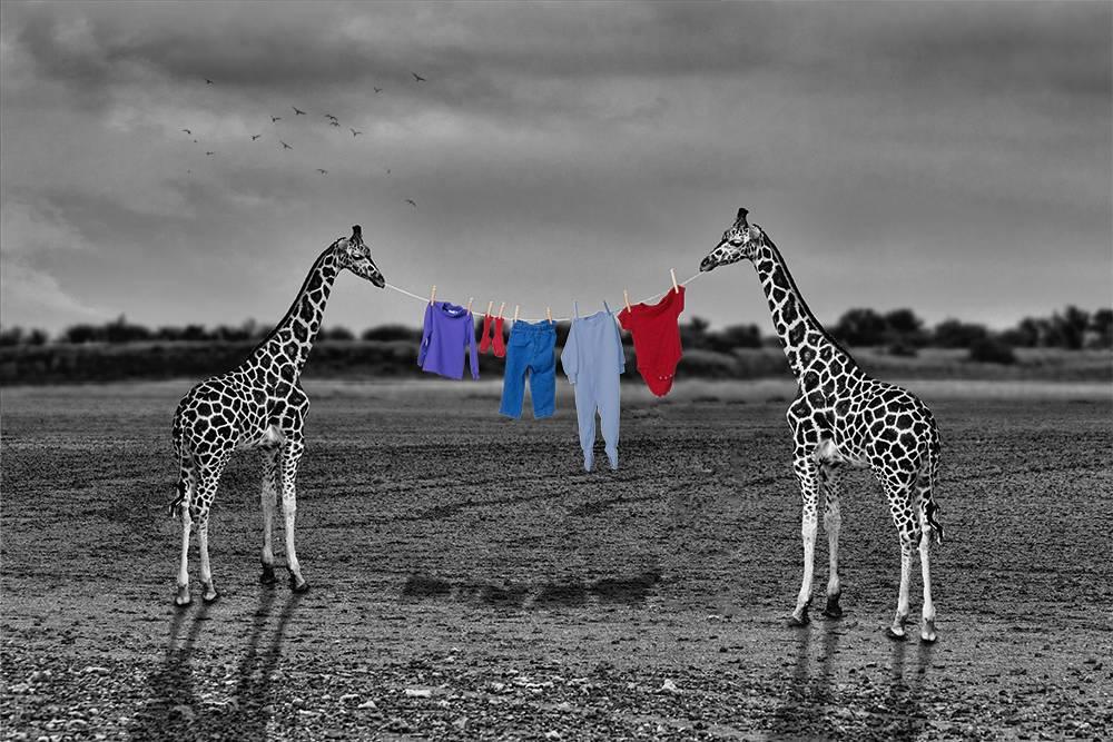 'Die Wäscheleine' von  Ursula Di Chito
