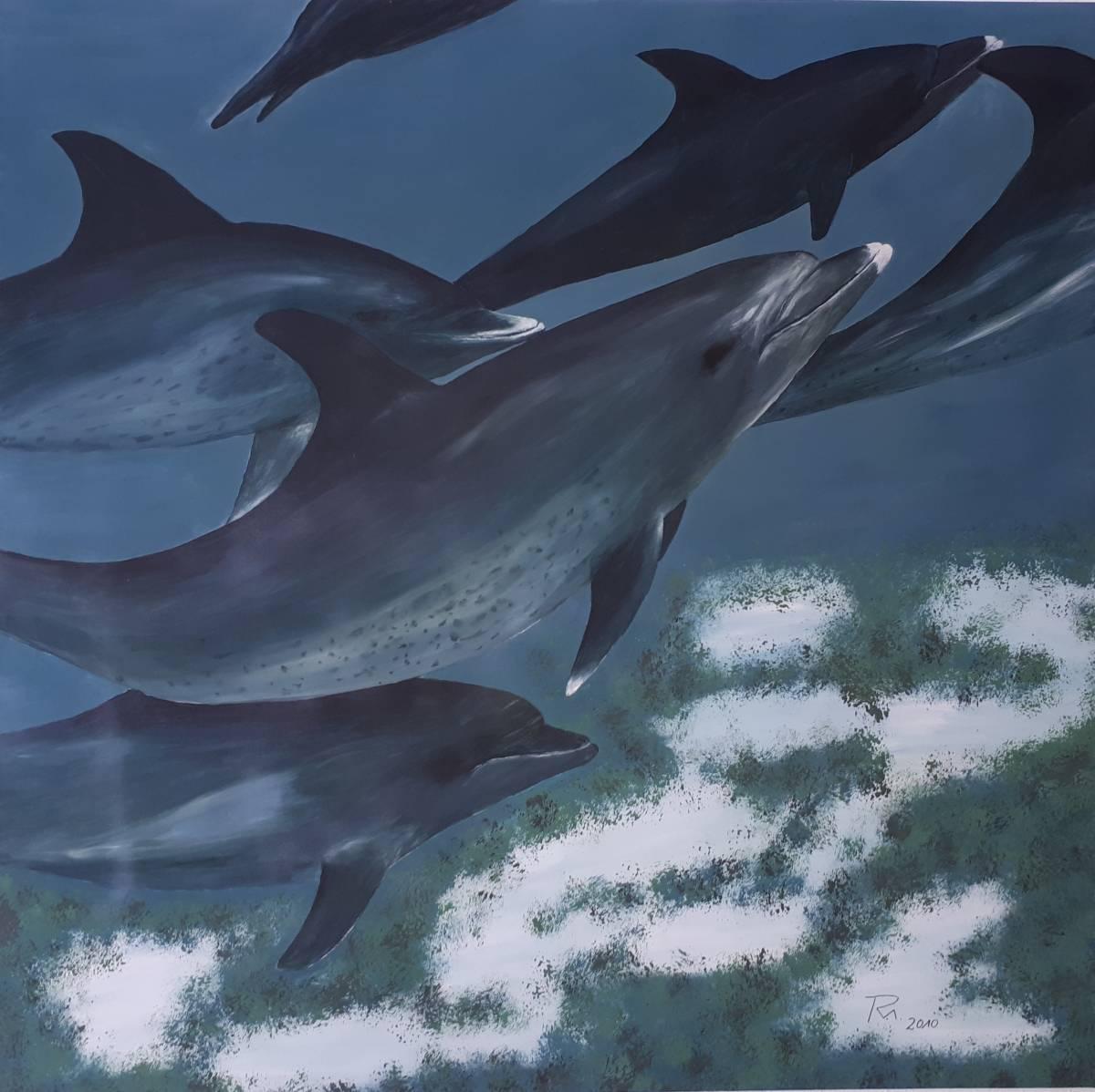 'Delfinschule' von farbenfreund