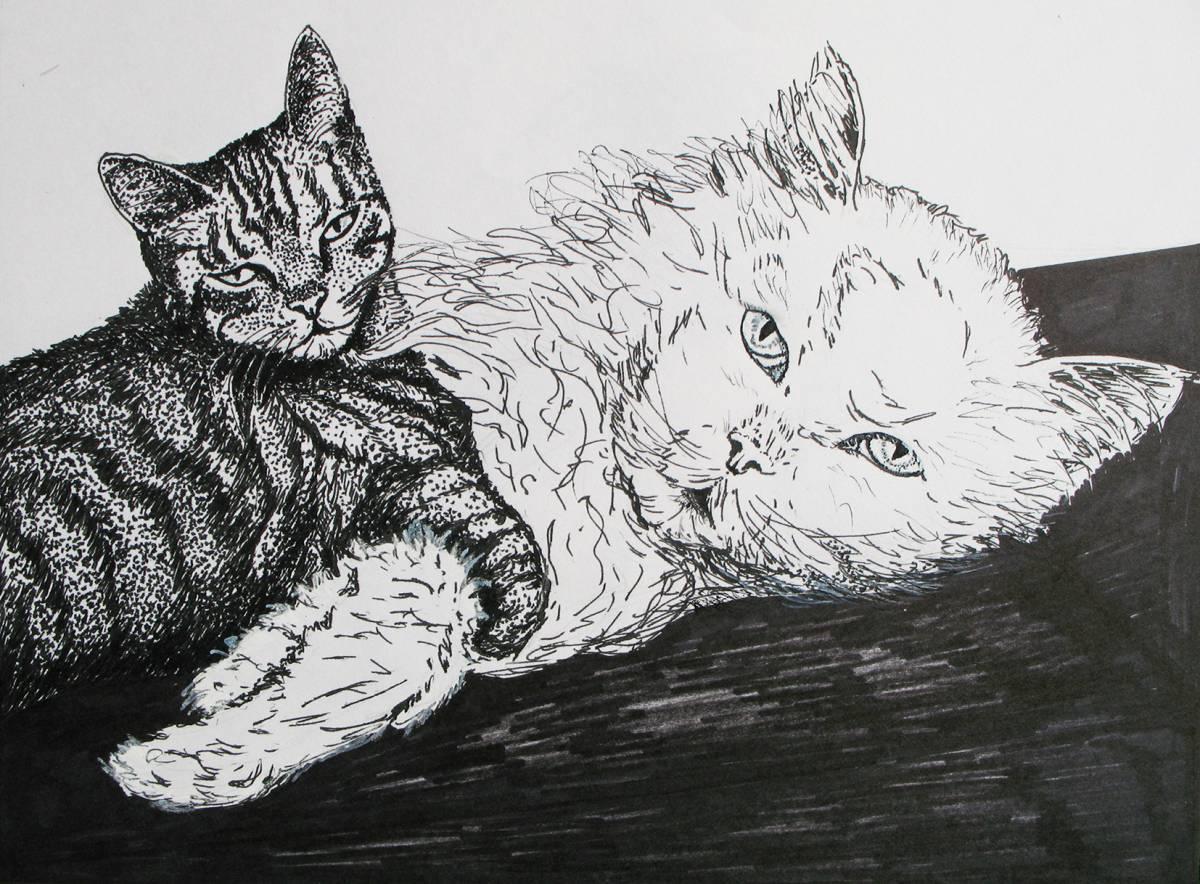 'Katzenliebe' von  kiviulma