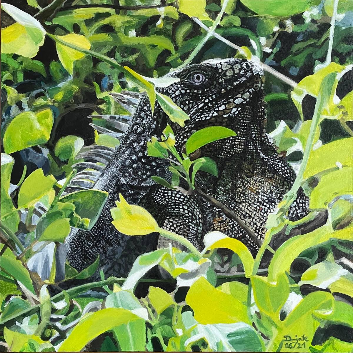 'Iguana View' von Dunjate