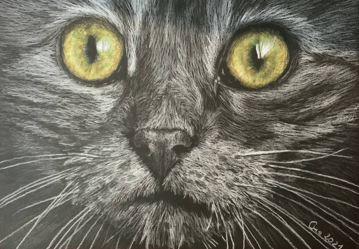 """'""""Katzenaugen""""' von cat zeichnet"""