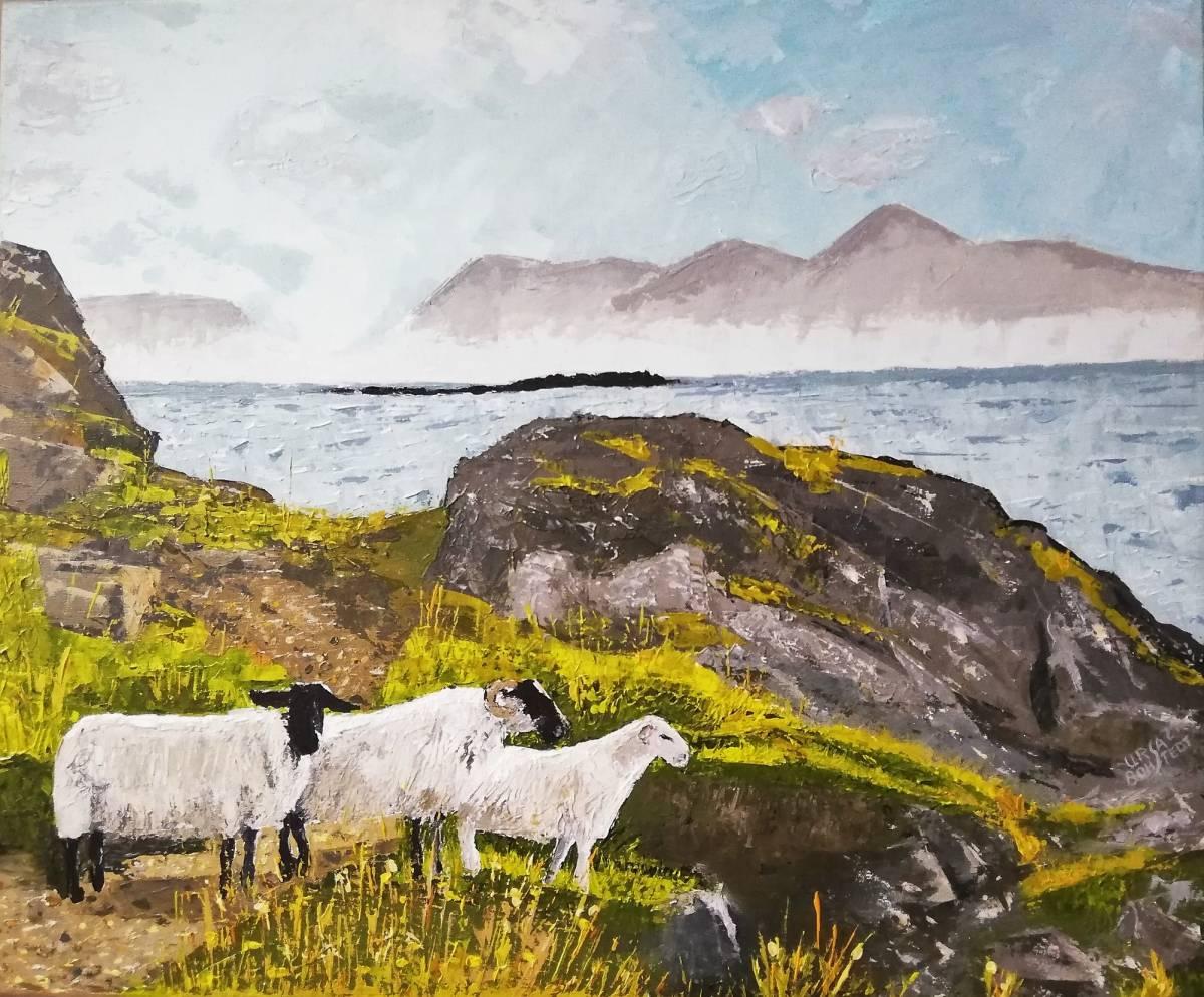 Sheep near Arisaig