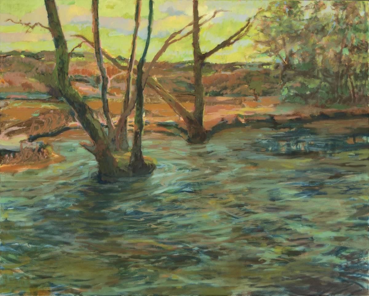 'Insel im Fluss' von  Bettina von Hartmann