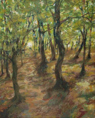 Sommerwald (Bilstein)