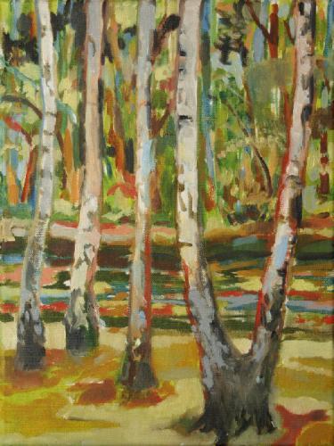Birken am Fluss 2
