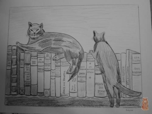 Books&Cats