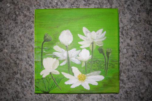 'Lotusblüte' von Magister ansehen