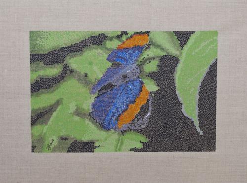 'Schmetterling' von pebu