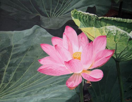 Li-La-Lotus