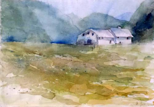 Häuser auf Feld
