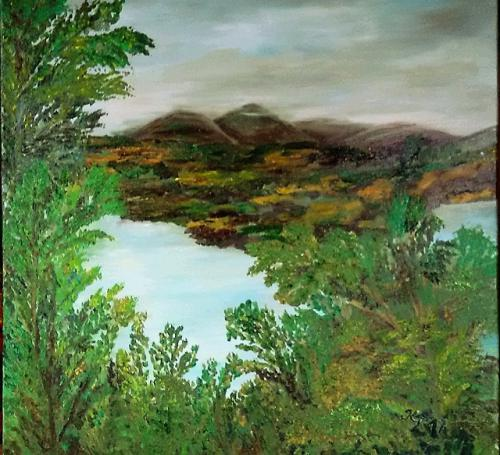 Blick in die Bantry Bay (Irland)