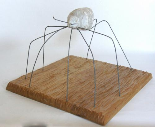 Die Spinne
