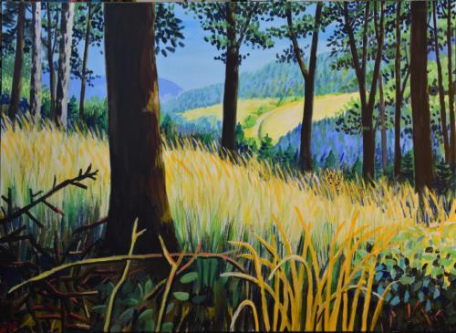 Blicke aus dem Wald