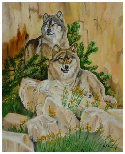 zwei Wölfe im Gebirge