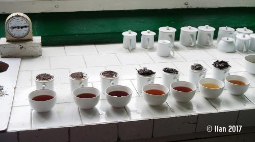 'Teefabrik 5' von  Ilan