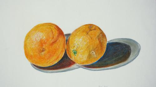 'Zwei Orangen' von  Friederike B