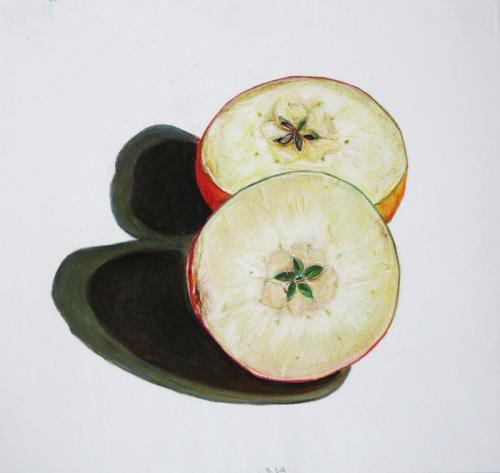 'Halbierte Äpfel' von  Friederike B