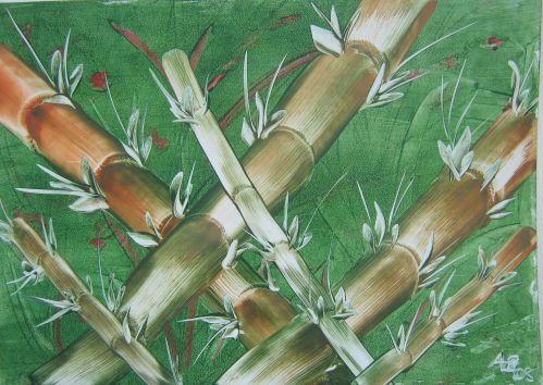 Blick in den Bambuswald
