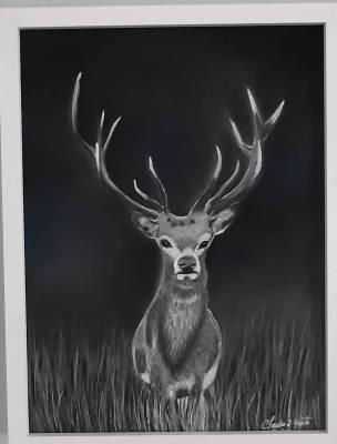 Der König der Wälder