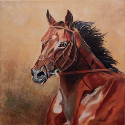 Braunes Pferdportrait