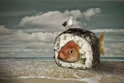 Gestrandeter Sushi-Fisch