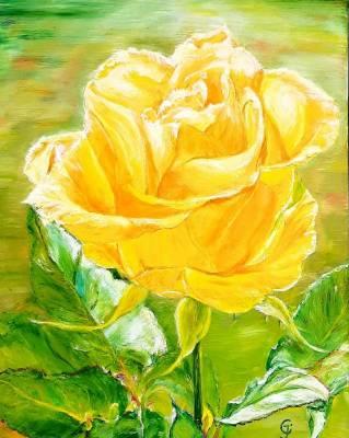 Gelbe Teerose