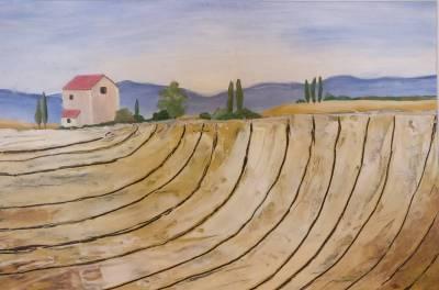 Acker der Toscana