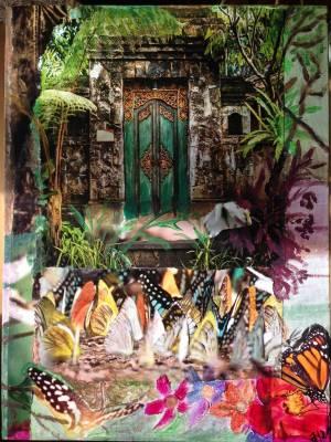Schmetterlingstür